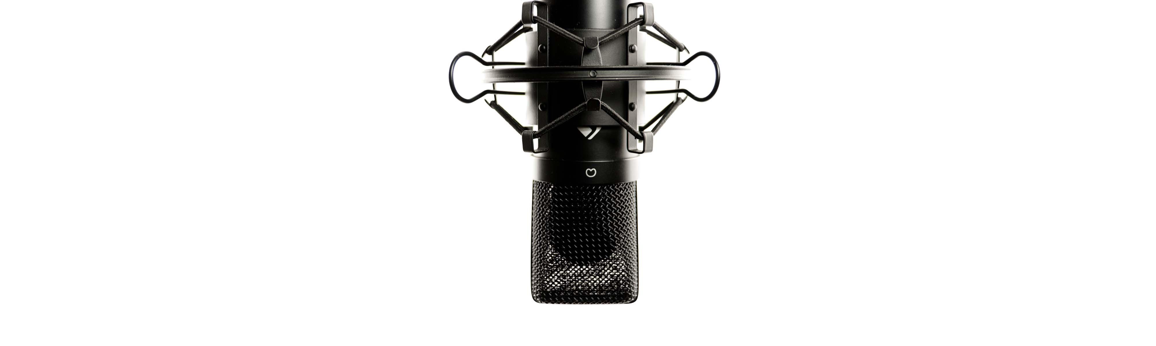 Sprecher Mikrofon Aufnahme