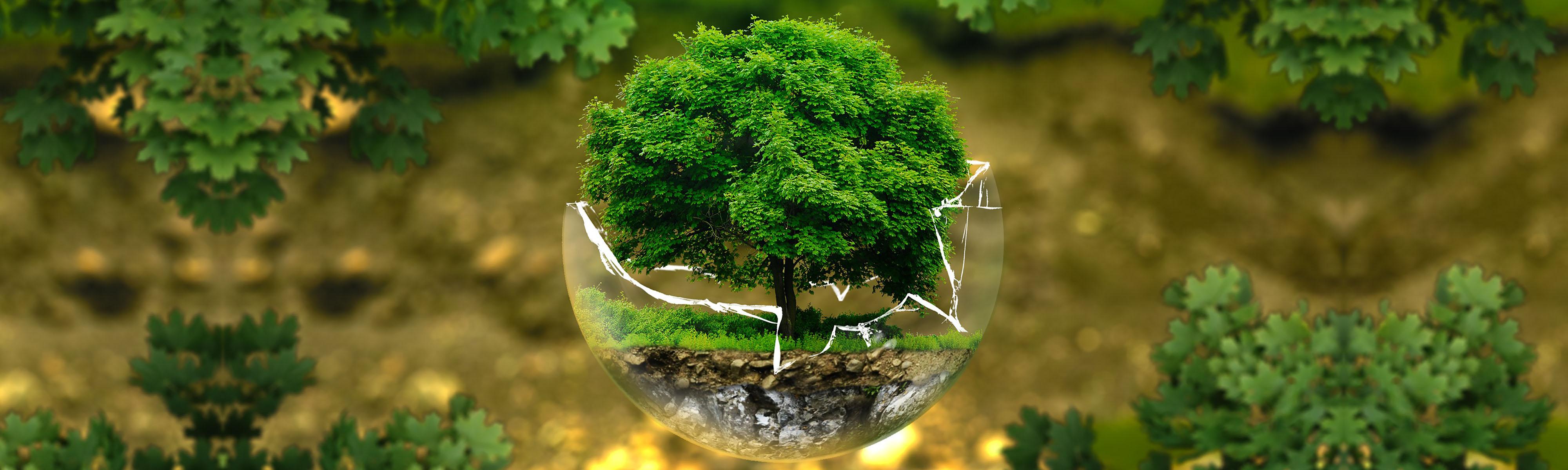Mach Mit - Baum im Glas